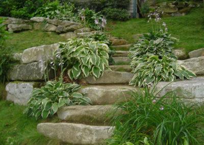Steps to Lake