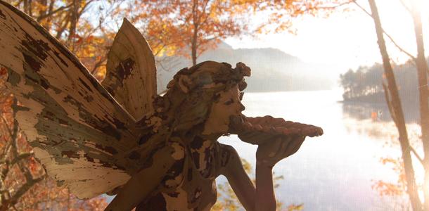 Fern Bank Fairy